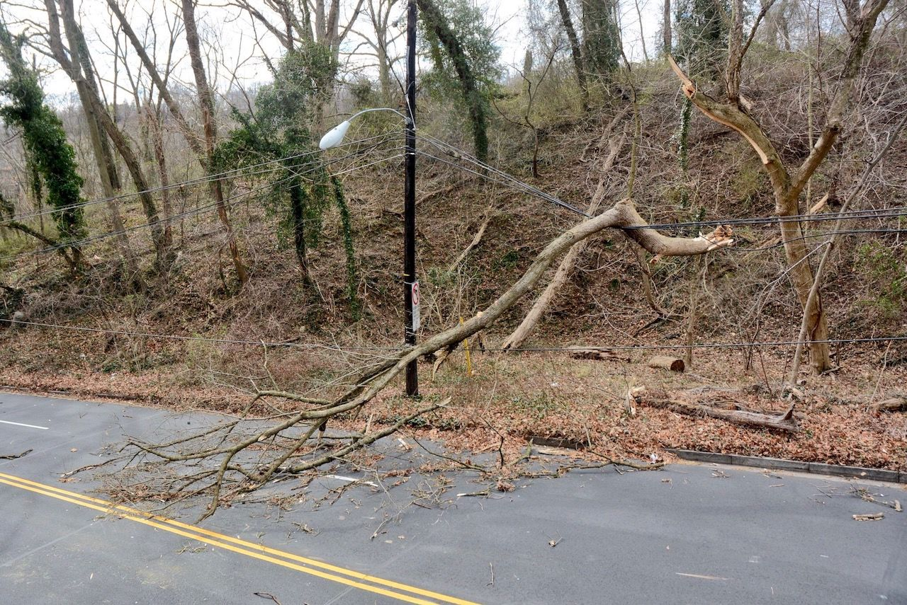 A fallen limb knocks down wires, blocking Arizona Avenue between Canal Road and MacArthur Boulevard. (WTOP/Dave Dildine)