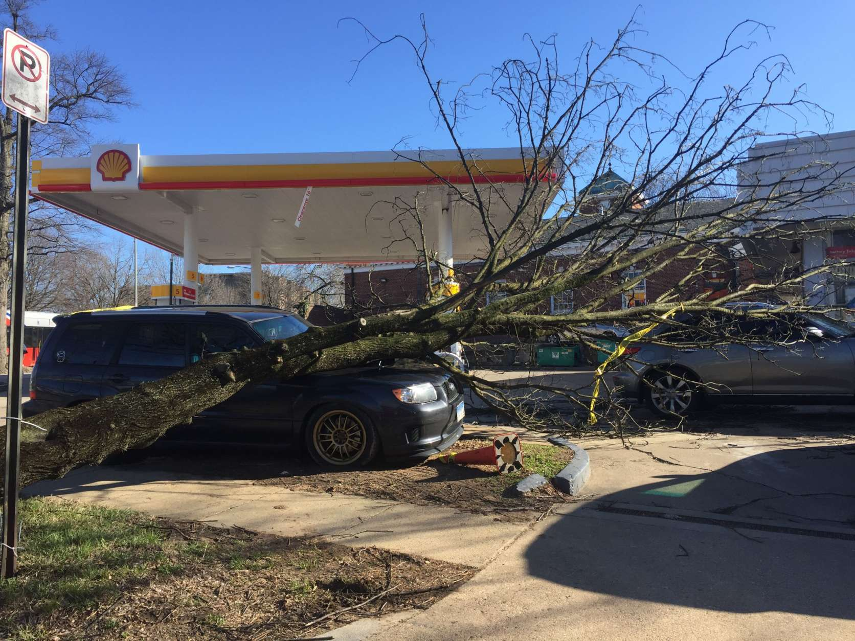 A tree falls near a gas station in Northwest D.C., following blustery winds in the area over the weekend. (Courtesy Christine Evans)