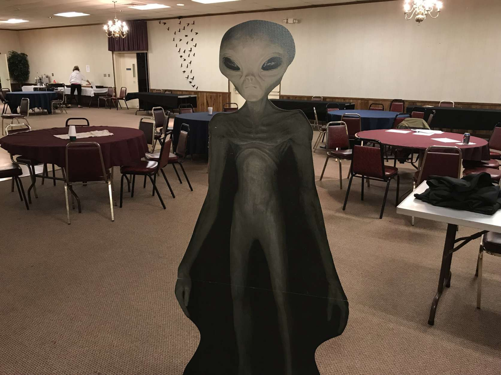 "A cardboard cutout of a grey alien made an appearance at the ""Mysteries of Space and Sky"" conference in Gambrills, Maryland, this past October. (WTOP/Michelle Basch)"
