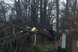 A clearer view of the damage done by a tree that fell on a home in Kensington, Maryland. A 100-year-old woman was taken to the hospital with non-life threatening injuries. (WTOP/John Domen)