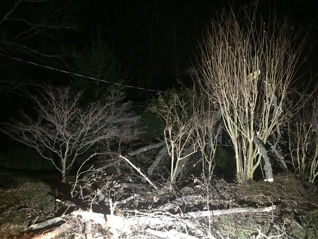 Several trees fell in Kensington, Maryland. One 100-year-old man had to be taken to the hospital after a tree fell on his home, the injuries he suffered are not believed to be life threatening. (WTOP/John Domen)