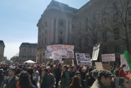 Signs pop up from the crowds at Saturday's March For Our Lives rally. (Courtesy Olivia Prieto)