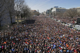 """Looking west away from the stage, the crowd fills Pennsylvania Avenue during the """"March for Our Lives"""" rally in support of gun control, Saturday, March 24, 2018, in Washington. (AP Photo/Alex Brandon)"""