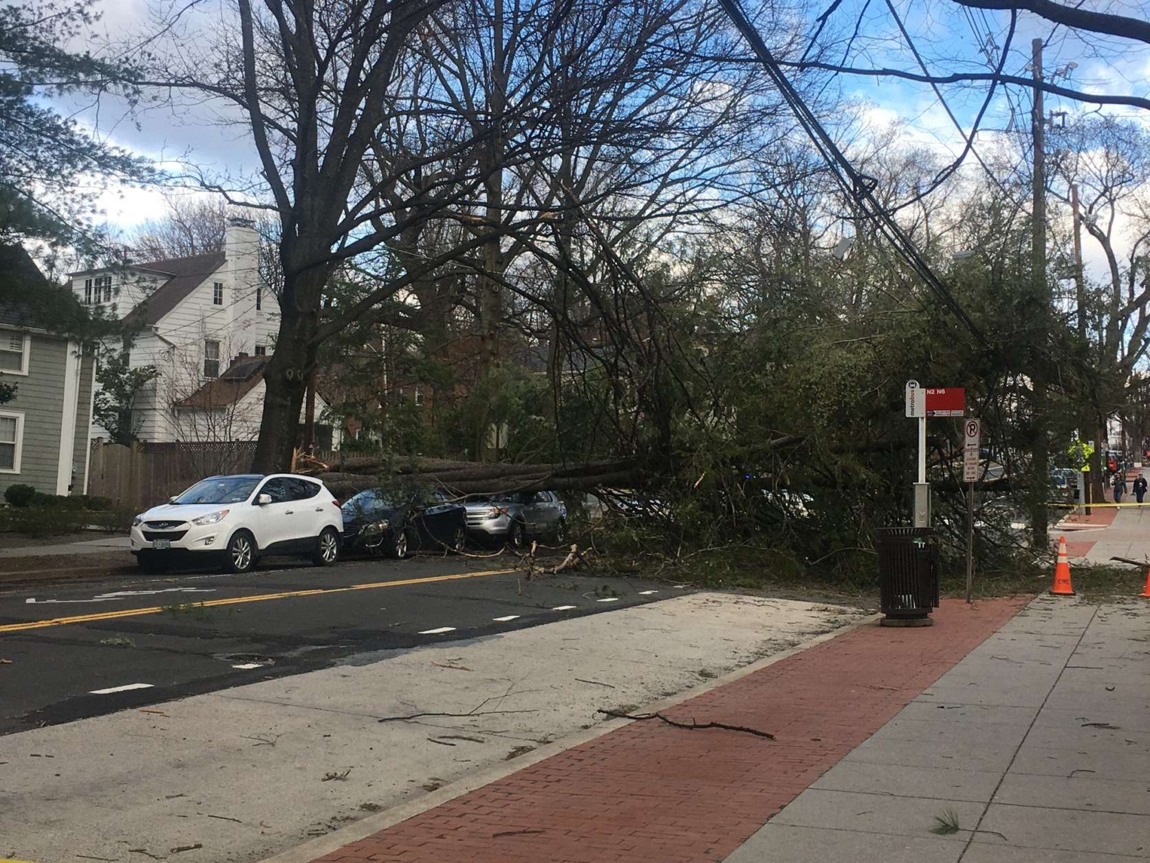 A tree landed on parked cars in the 3100 block of New Mexico Avenue in D.C. Friday. (Courtesy @dougfun via Twitter)