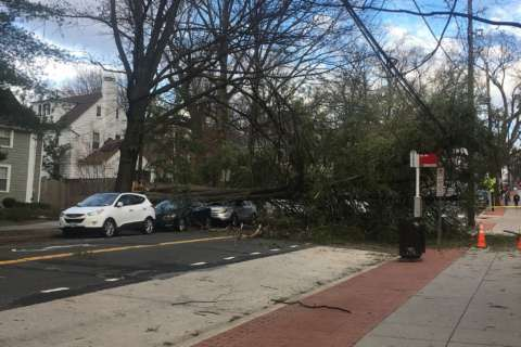 Severe winds leave more than 600,000 without power in DC area