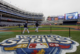 The Yankees are one of the most recognizable teams in all of sports, so it's only fitting they have the most expensive stadium in baseball. The average cost comes in at $95. File. (AP Photo/David J. Phillip)