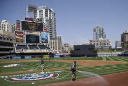 Petco Park, the home of the San Diego Padres, is No. 20 on the list. It costs $63 to see a Padres game in San Diego. File. (AP Photo/Lenny Ignelzi)