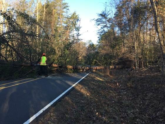 Prince William Forest Park will be closed for weeks in order to clean up and repair damage from Friday's wind storm. (Courtesy National Park Service)