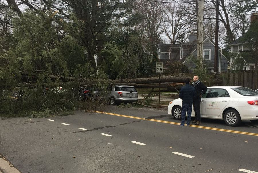 A downed tree blocks traffic on New Mexico Avenue by American University (Courtesy Christian Paolini via Twitter)