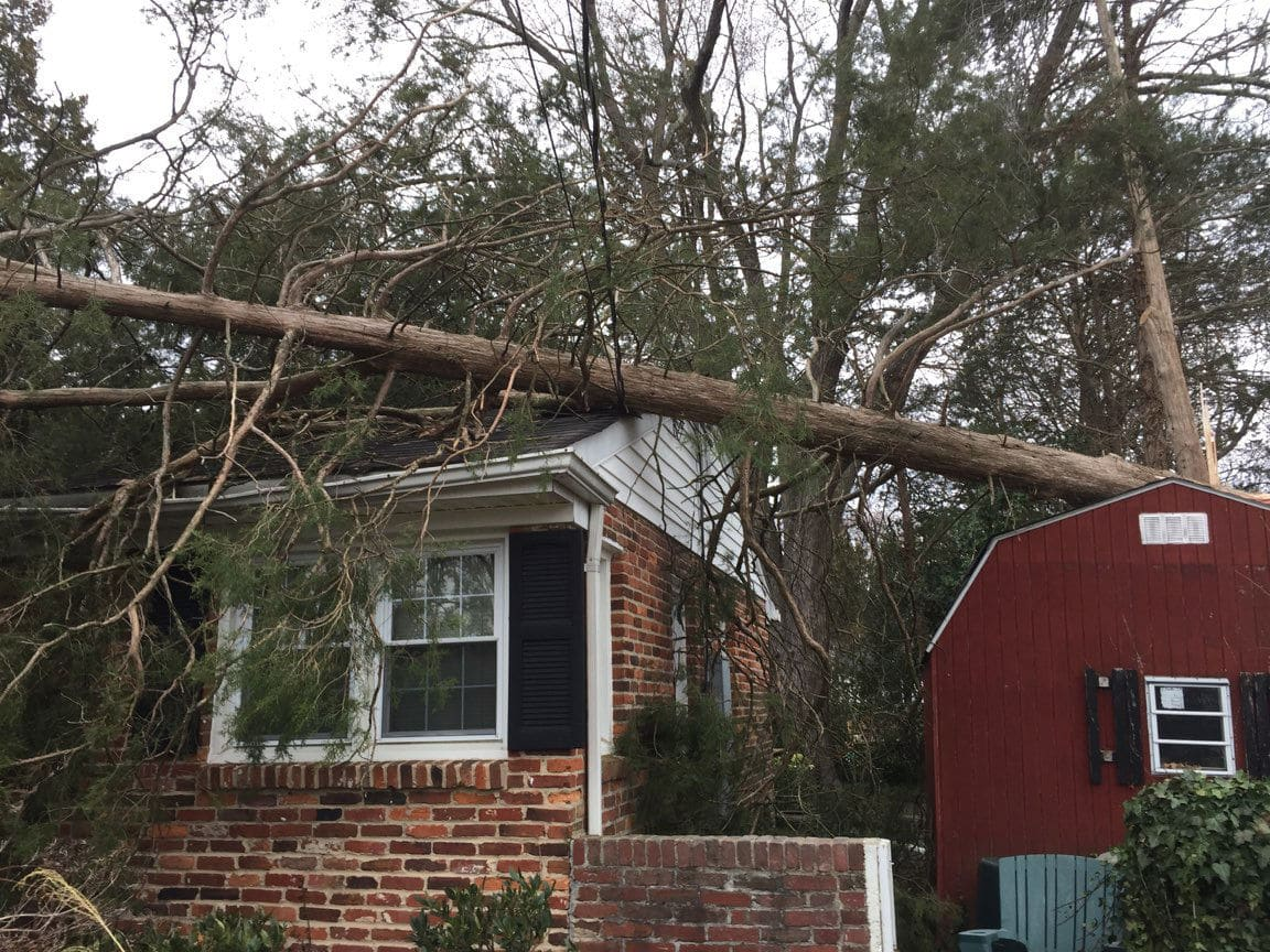 A downed tree on a home in the Hollin Hills area of Fairfax. (WTOP/Kristi King)