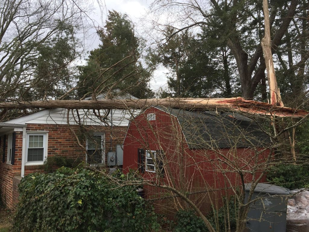 A downed tree on top of a home in the Hollin Hills area of Fairfax. (WTOP/Kristi King)