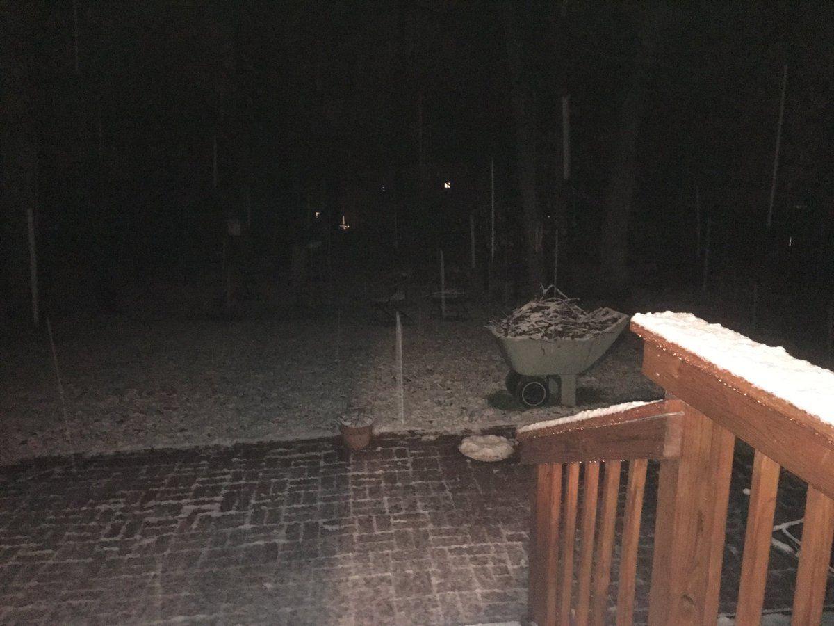 Snow in West Springfield, Virginia. (Courtesy Carol Brown)