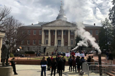 'Gun Bill Day' delivers over 30 bills for consideration to Md. House