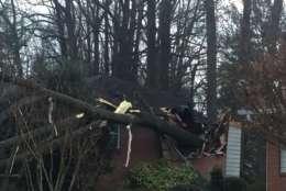 Photo shows a tree on a house.