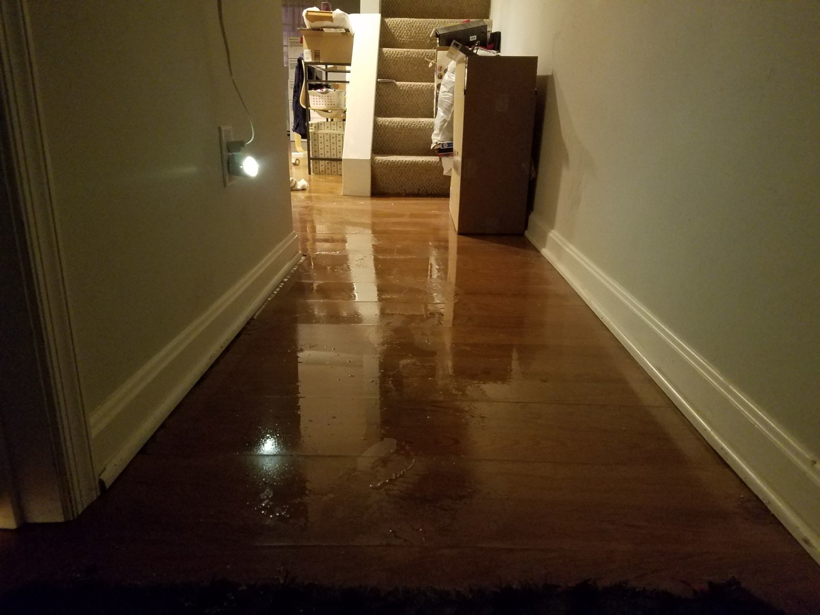 Basement apartments in the District are flooding. (WTOP/Will Vitka)