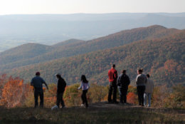 Viewers look out on autumn foliage from an overlook in Shenandoah National Park south of Front Royal. Va., Saturday, Oct. 21, 2006. (AP Photo/Robert Meyers)