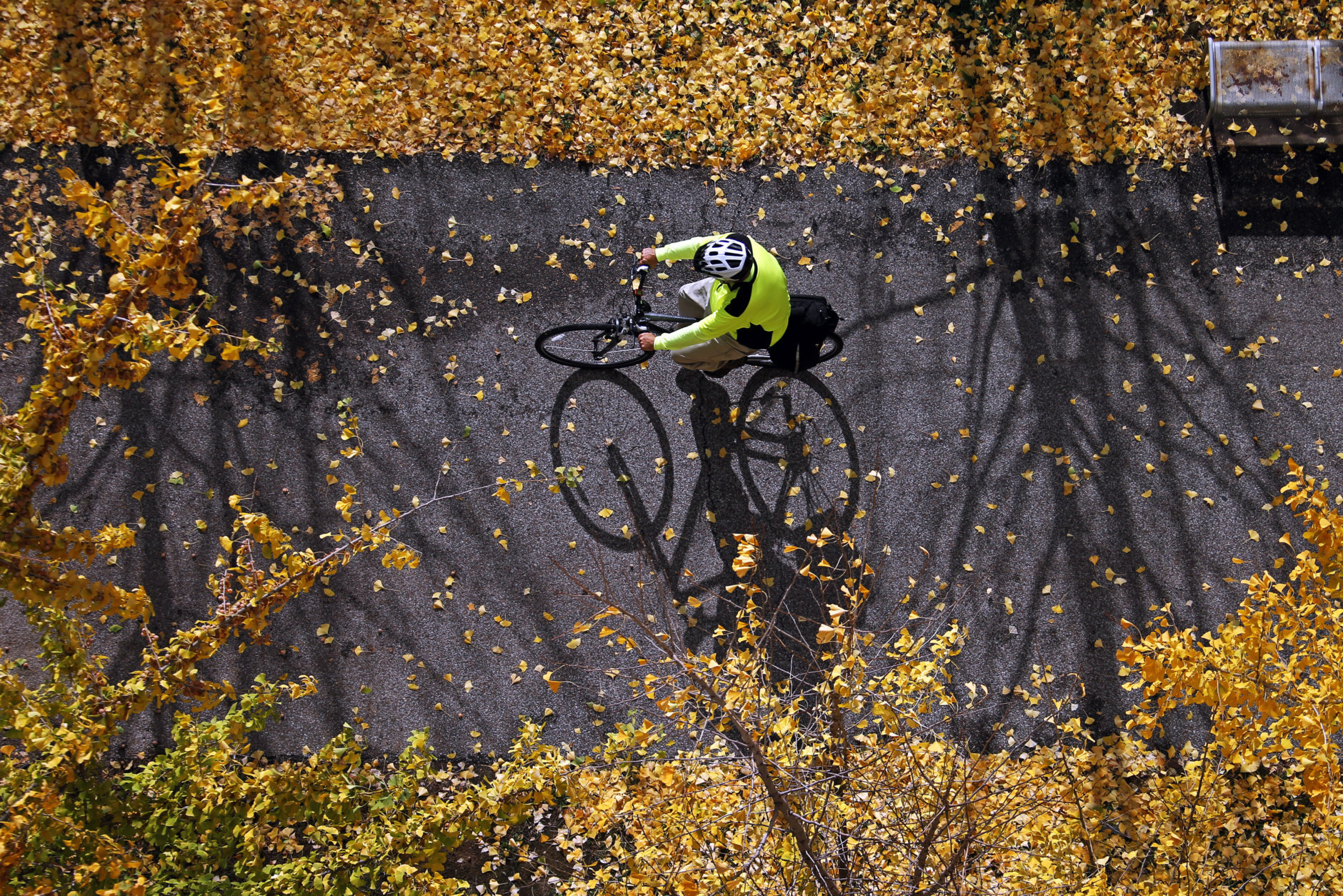 A bicyclist rides on the beginning of the 150.5 mile Great Allegheny Passage that runs between downtown Pittsburgh and Cumberland, Md., Thursday, Nov. 12, 2015. Combined with the C@O Canal Towpath, that begins in Cumberland, Md., they are a 334.5 mile ride between Pittsburgh and Georgetown in Washington D.C. (AP Photo/Gene J. Puskar)