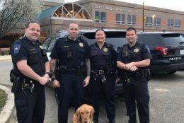 Comfort dogs from Lutheran Church Charities, in Illinois, met with first responders before classes began at Great Mills High School. (Courtesy Lutheran Church Charities)