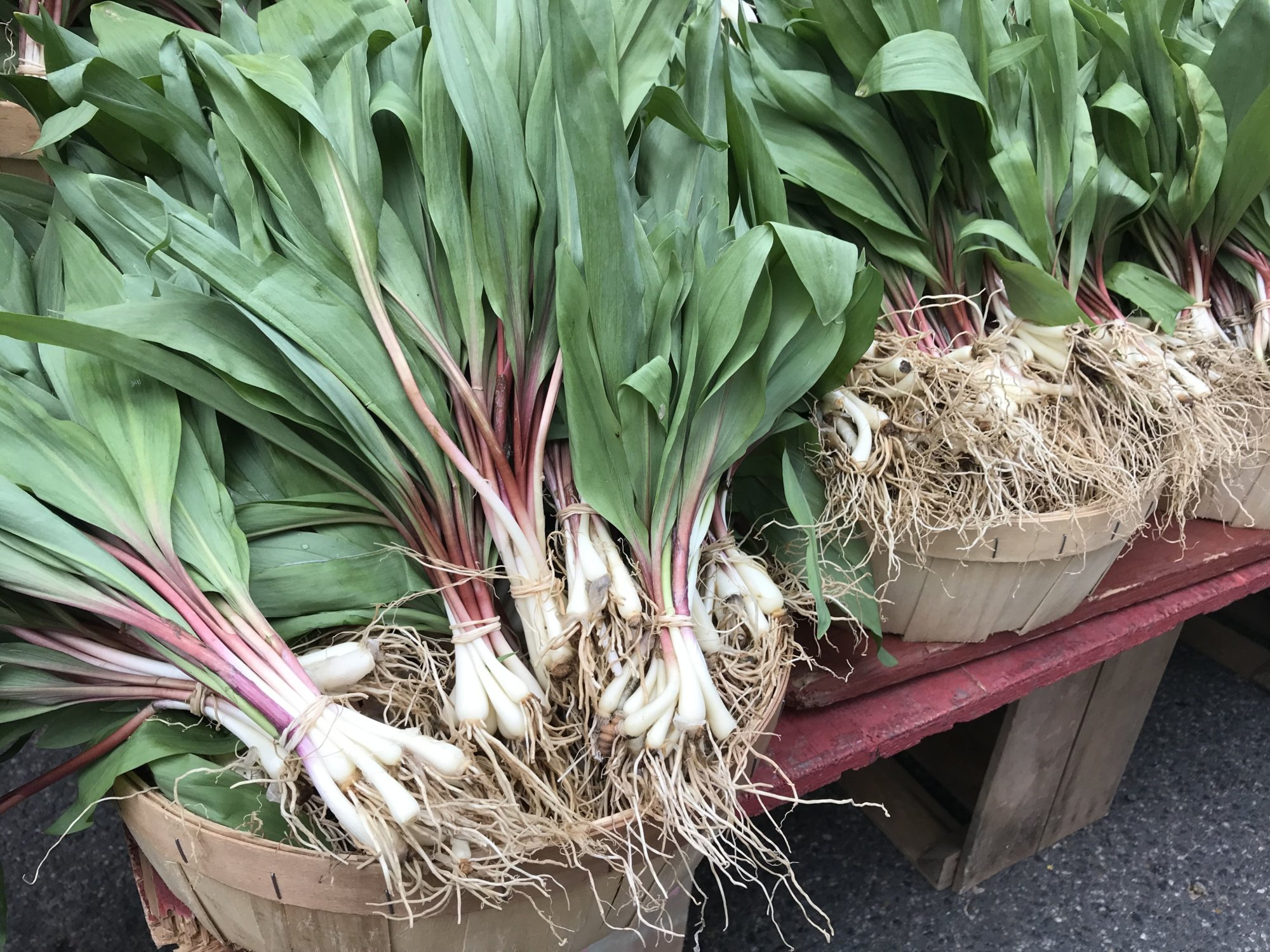 Ramps, radishes, rapini: What to make with farmers market finds