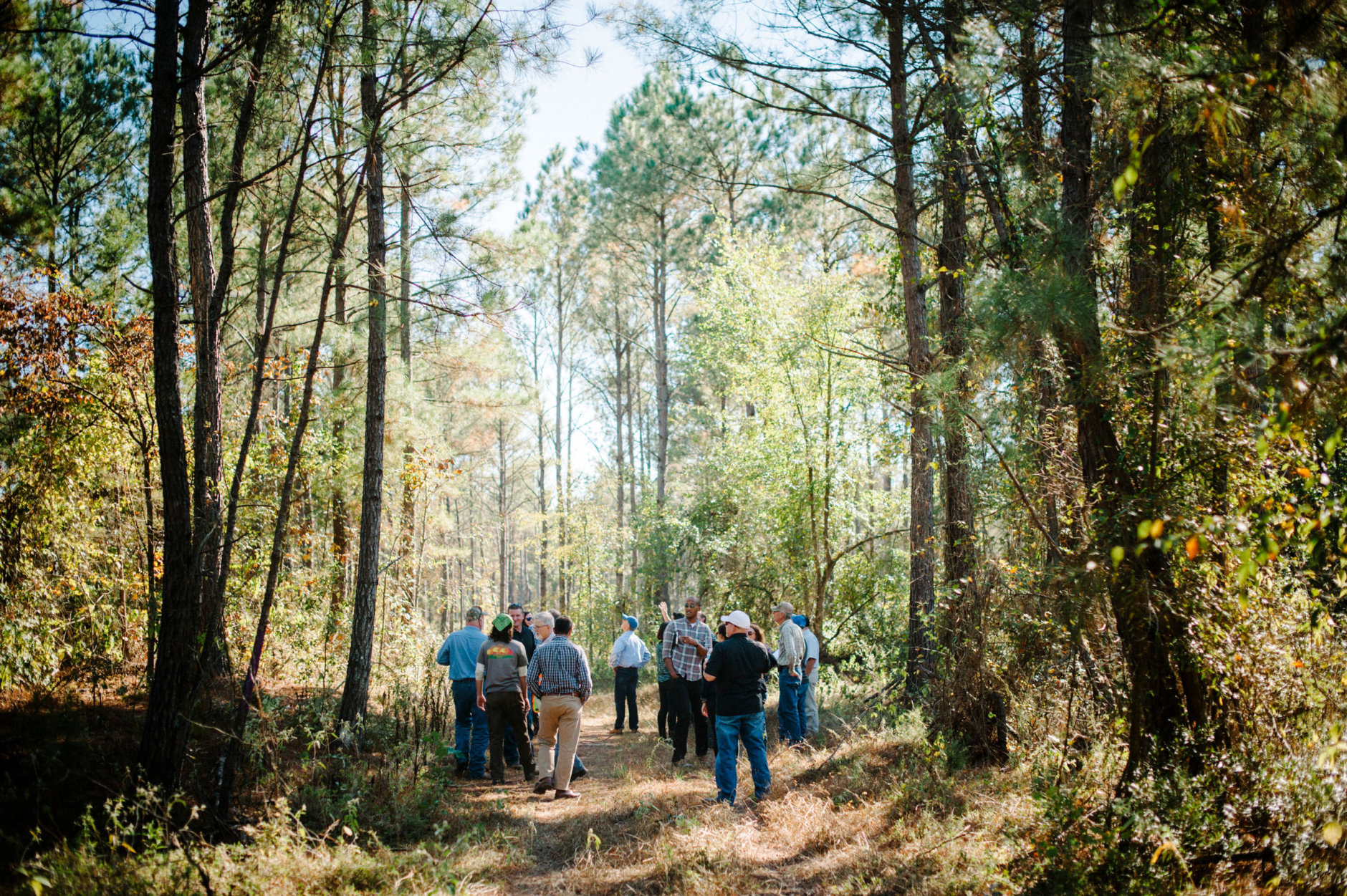ASHDOWN, AR, United States - OCTOBER 28: FSC Landowner Learning Exchange participants tour the Sikes Farms property near Ashdown, AR, on Thursday, October 28, 2015. Participants in the day's programming were informed about FSC certification through a series of lectures and given tours of properties held by local FSC certified landowners whose timber is sold to Domtar.