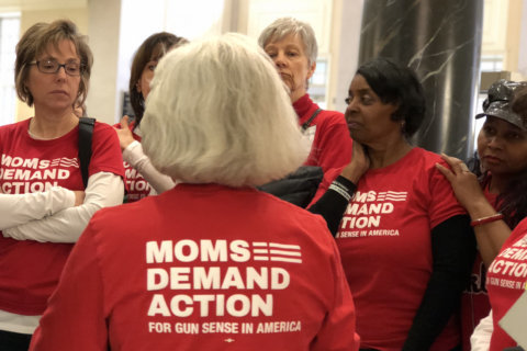 Advocates push for Md. bill to take guns from domestic abusers