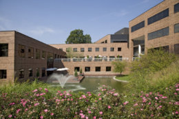 Campus at Sunrise, a three-building portfolio with nearly 254,000 square feet is on the market for $61 million. (Courtesy Fatimah Waseem/Cushman & Wakefield)