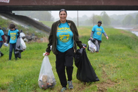 How to celebrate Earth Day 2018 in the DC area