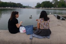 Linton said tourists take more pictures of the ducks than of the Capitol. (WTOP/Kathy Stewart)