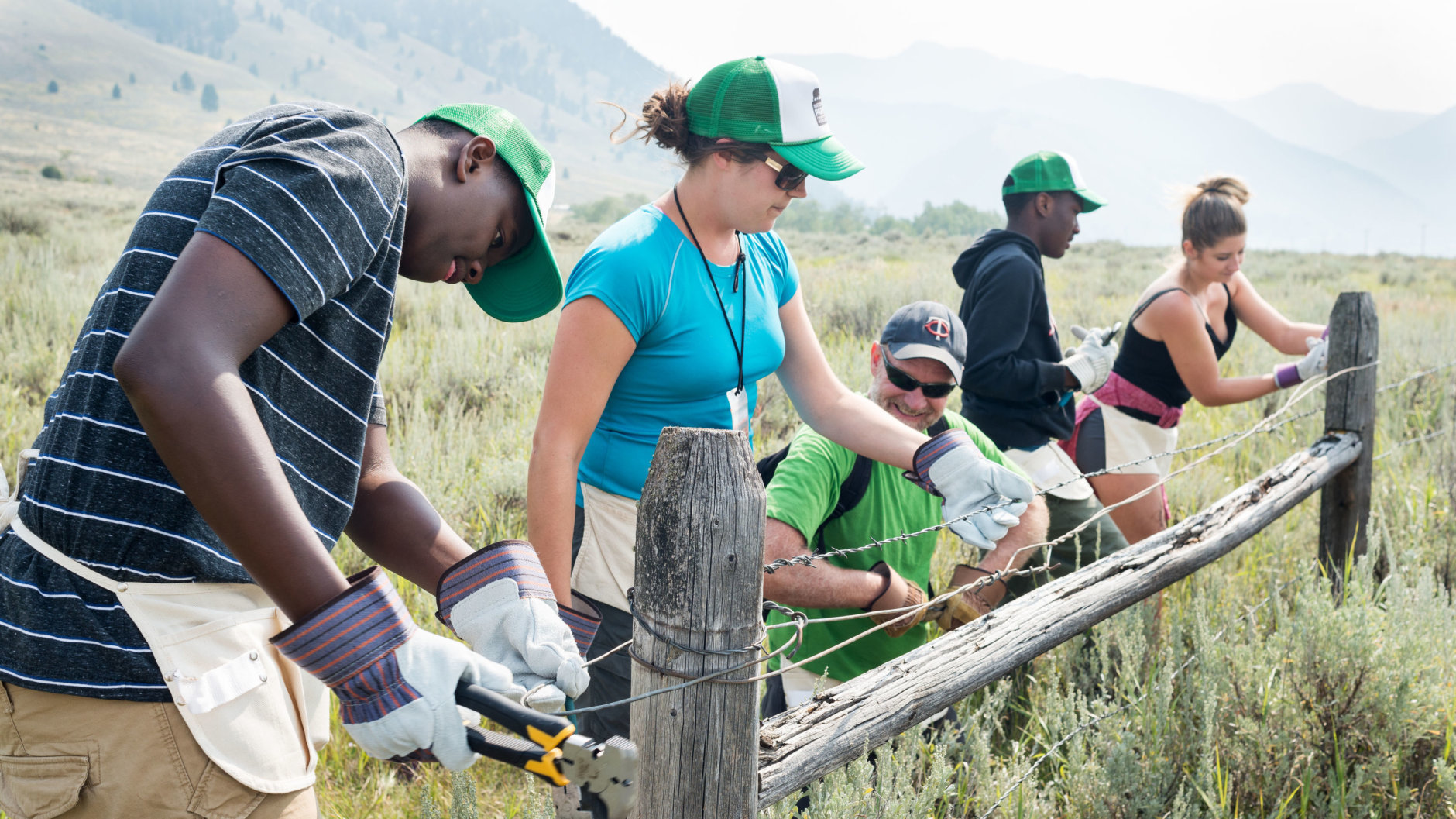 Volunteers Take Down the Fence to Allow for Antelopes to Roam.  Volunteers Take Down the Fence to Allow for Antelopes to Roam.