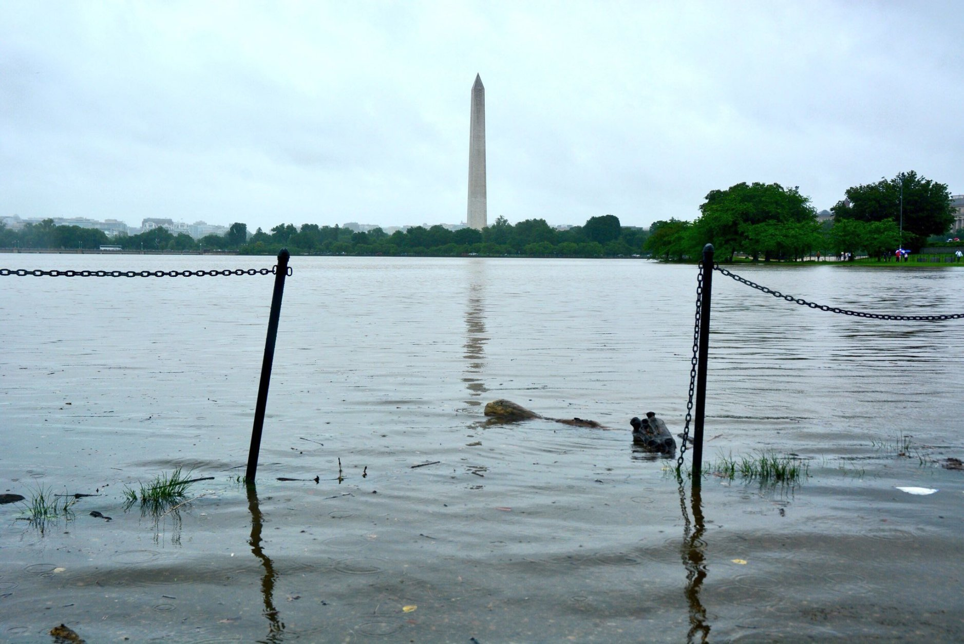 The Washington Monument can be seen in the distance as floodwaters build up at the Tidal Basin. (WTOP/Dave Dildine)