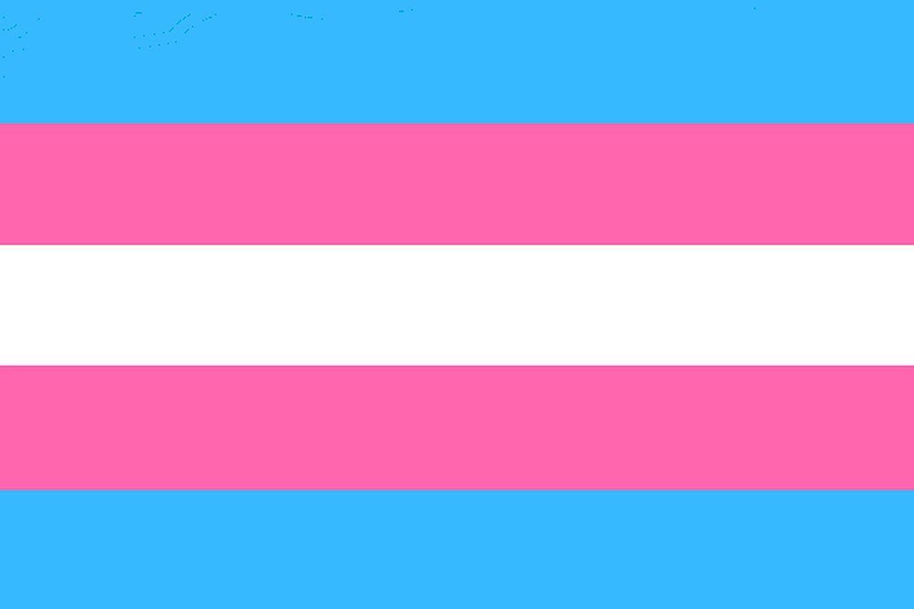 The transgender pride flag by Monica Helms.
