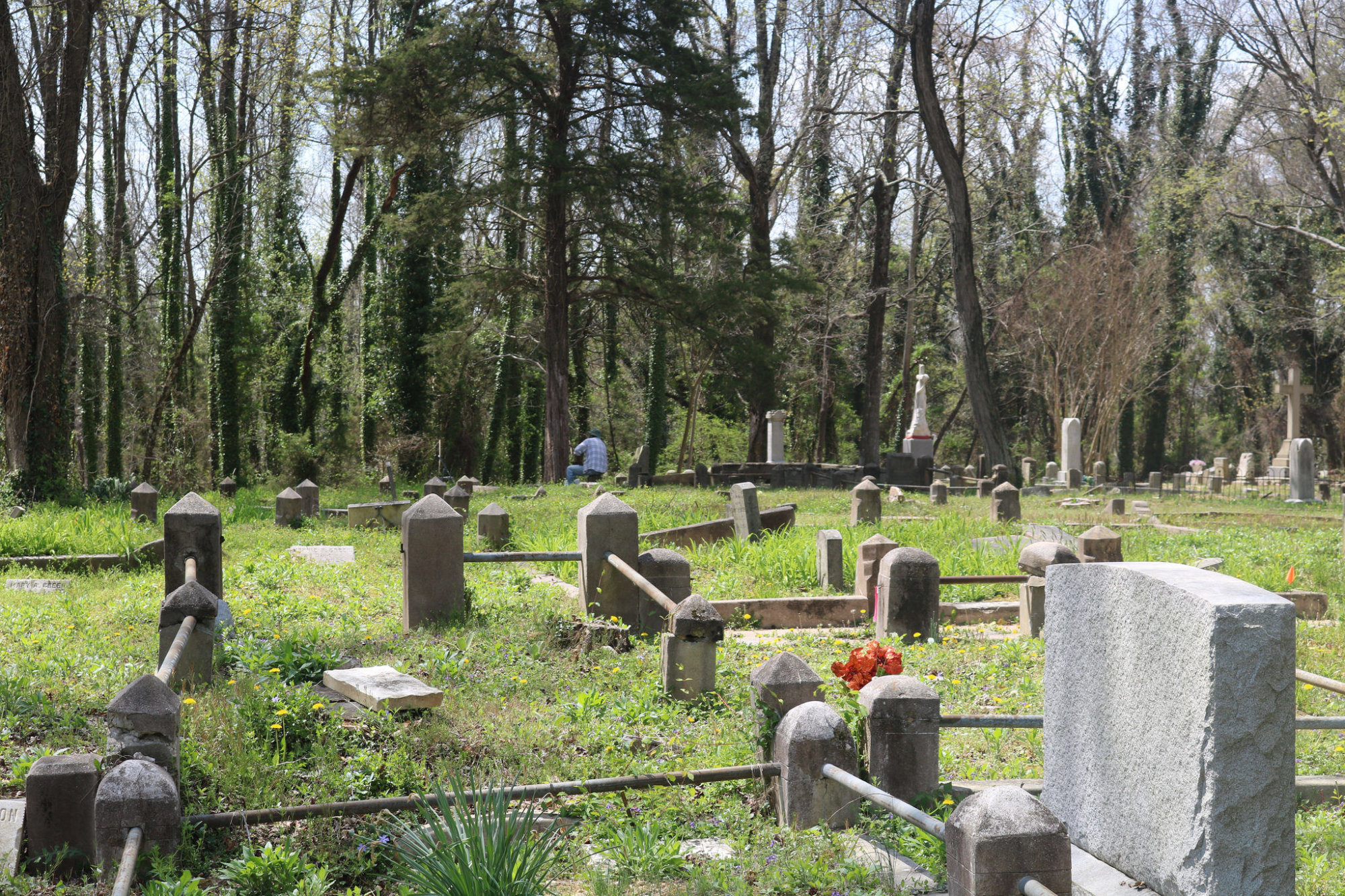 Evergreen Cemetery in April. (Photo credit: George Copeland Jr.)
