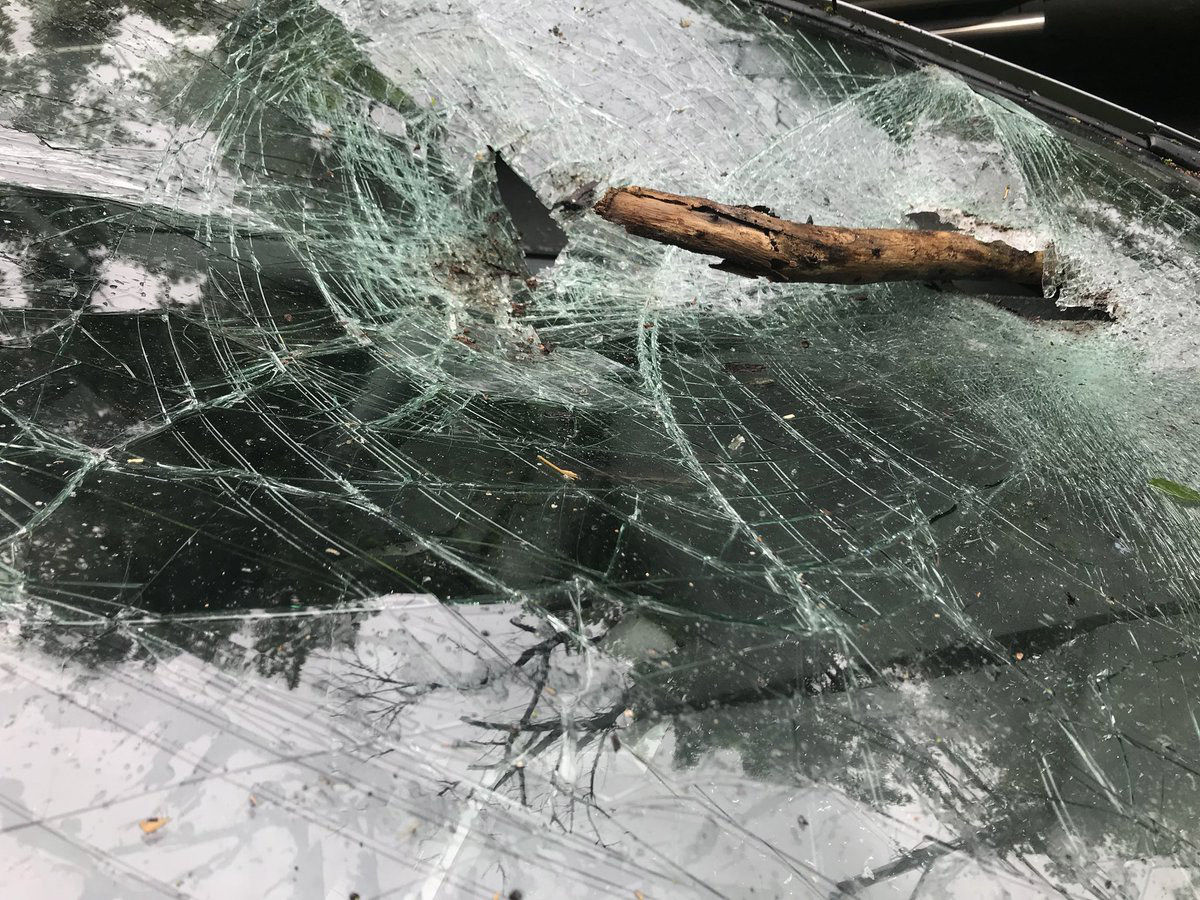 A tree fell on this car's windshield on Chain Bridge Road in Arlington, Virginia. Fortunately, no one was hurt. (WTOP/Neal Augenstein)