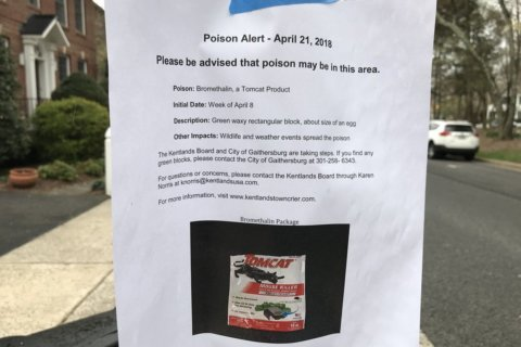 Cleanup continues for rodent poison scattered around Md. neighborhood