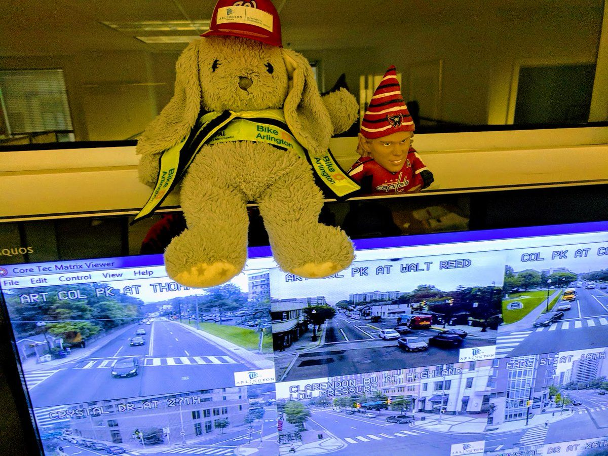 On May 29, undeterred, the department tweeted a photo of the unclaimed bunny at the county's transportation center. (Photo courtesy of Arlington DES Twitter)