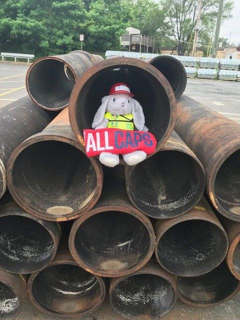 VDOT, after joining the Twitter saga, took the bunny on a May 31 pipeline search in Northern Virginia. (Photo courtesy of VDOT Northern VA Twitter)