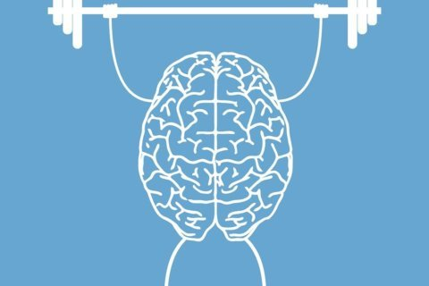 The beneficial connection between memory and exercise