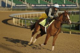 Kentucky Derby hopeful Good Magic runs during a morning workout at Churchill Downs Tuesday, May 1, 2018, in Louisville, Ky. The 144th running of the Kentucky Derby is scheduled for Saturday, May 5. (AP Photo/Charlie Riedel)