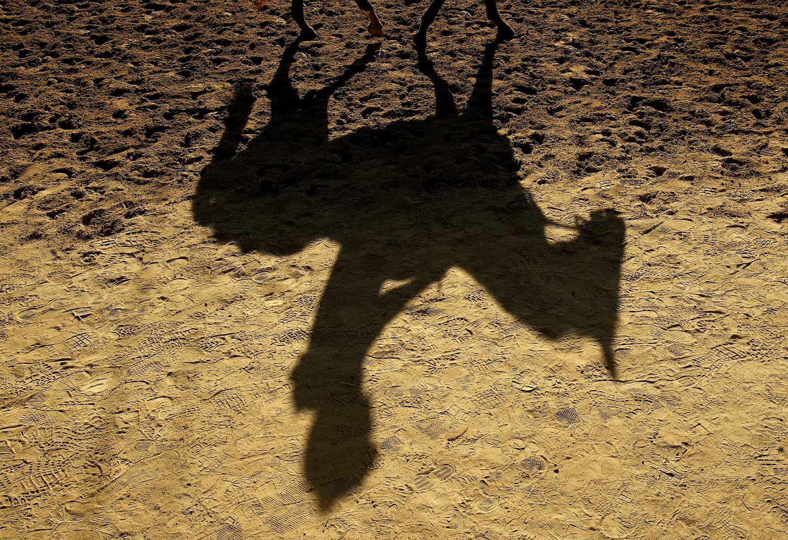 A horse and rider cast a shadow as they come off the track following a morning workout at Churchill Downs Tuesday, May 1, 2018, in Louisville, Ky. (AP Photo/Charlie Riedel, File)