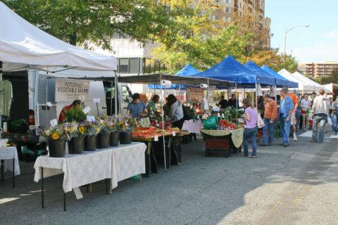 Arlington's newest farmers market: Arlington Forest