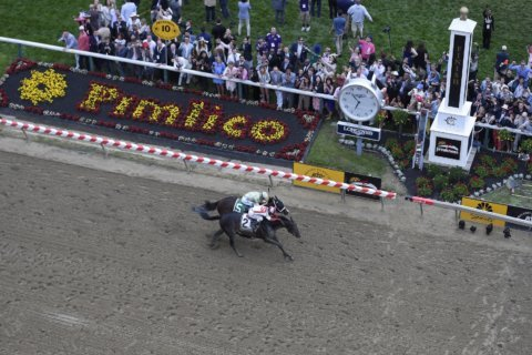 Report: Track that hosts Preakness should be demolished