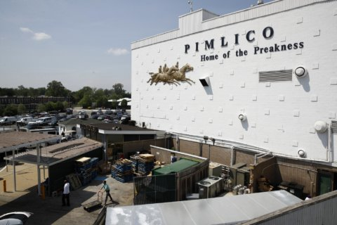Hold your horses, race fans: Stricter food, drink rules for Preakness visitors