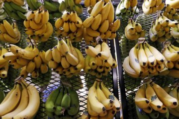 Cocaine found with bananas at 3 Washington state stores