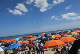 Beach umbrellas dot the landscape of Bethany Beach on a sunny day.