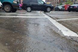 FILE - Rain falls along 14th Street in Northwest D.C. (WTOP/Will Vitka)