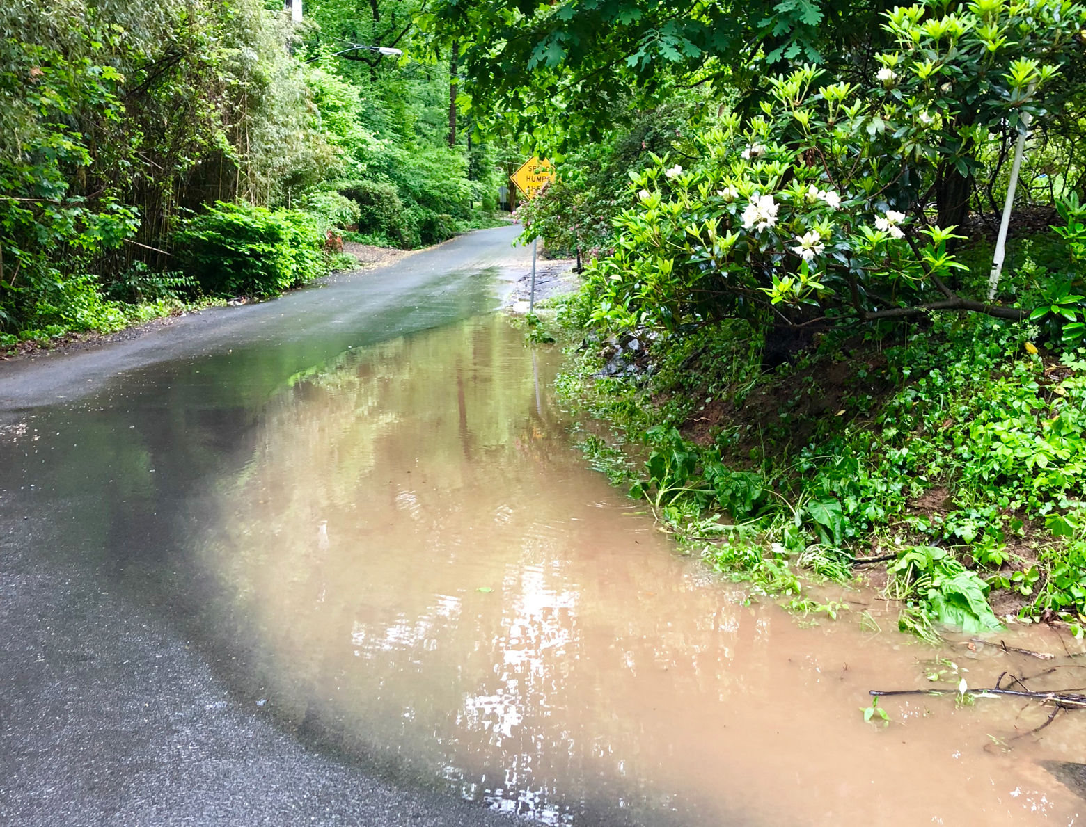 Valley Wood Road in McLean, Virginia on Thursday evening. (WTOP/Joslyn Chesson)