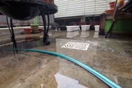 Water floods a backyard in Columbia Heights on Wednesday. (WTOP/Will Vitka)