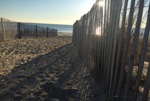 rehoboth beach fencing is shown