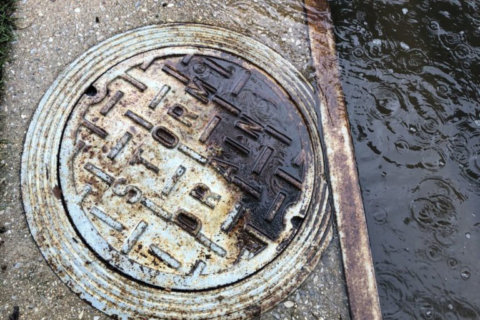 How to report blocked drains, flooding