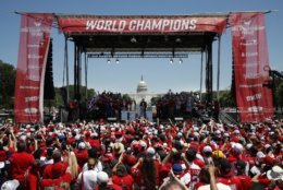 Fans cheer as the Washington Capitals hockey team attend a victory rally in celebration of winning the Stanley Cup, Tuesday, June 12, 2018, on the National Mall in Washington. (AP Photo/Jacquelyn Martin)